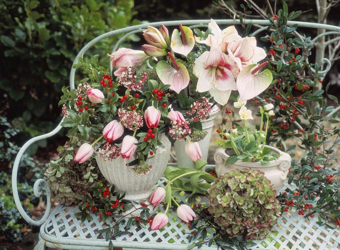 Garden_Pink