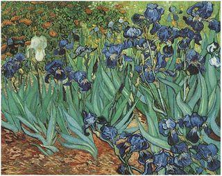 Gogh_irises
