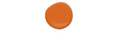 Longhorn orange