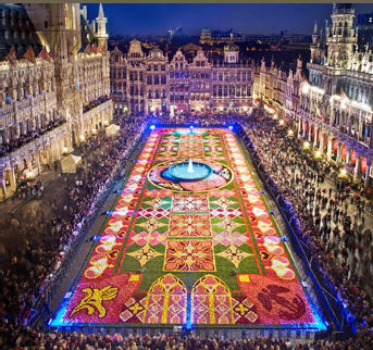 Flower Carpet nigh