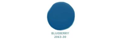 Blueberry 2063-30